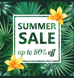 summer sale concept summer background vector image