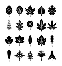 Set icons of leaf vector image