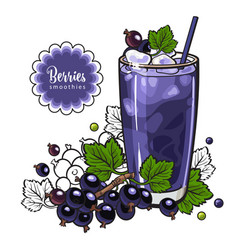 Black currant smoothie in sketch style isolated on vector