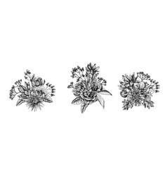 Flower bouquet black and white viburnum vector