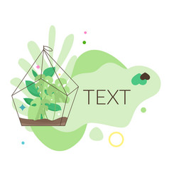 House plant banner vector