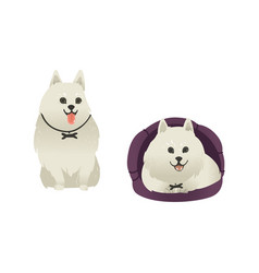 Set of happy smiling white dogs sitting and lying vector