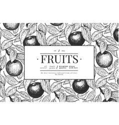 apple branches design template hand drawn garden vector image
