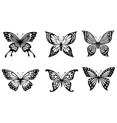 Beautiful butterflies in monochrome style vector image vector image