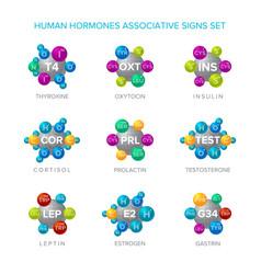 Human hormones signs with associative molecular vector