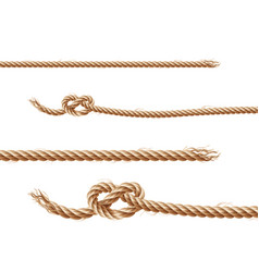 set of ropes jute or hemp twisted cords vector image