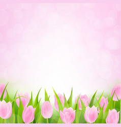 Spring pink tulip vector