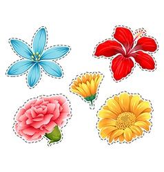 Sticker set with different types of flowers vector image