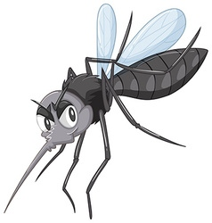 Wild mosquito in black color vector image vector image