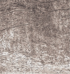 Wood texture with natural pattern vector