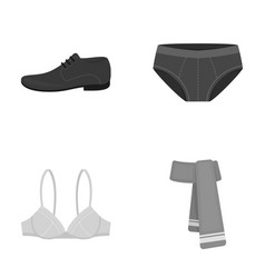 male shoes bra panties scarf leather clothing vector image