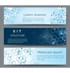 Molecular structure horizontal banners vector image vector image