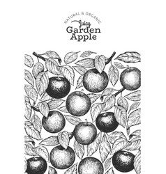 Apple branches design template hand drawn garden vector