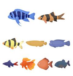Aquarium fish set icons in cartoon style big vector