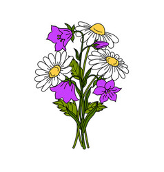 beautiful flowers on white background vector image