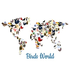 Birds world map with continents vector image
