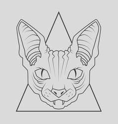 cat face design vector image
