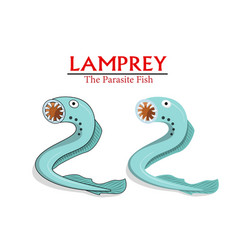 lamprey parasite fish in cartoon design vector image