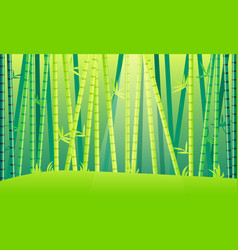 Landscape bamboo forest vector