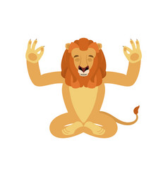 lion yoga wild animal yogi isolated beast vector image