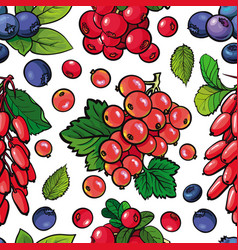 summer berries seamless pattern with fresh ripe vector image