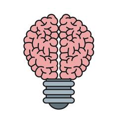 Bulb brain creative ilumination intelligence vector
