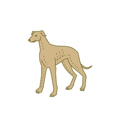 Greyhound Dog Standing Mono Line vector
