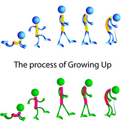 Man from young to old schematic coloured vector
