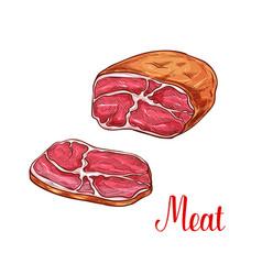 Meat brisket sketch with slice of beef or pork vector