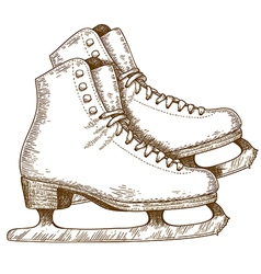 engraving winter skates vector image