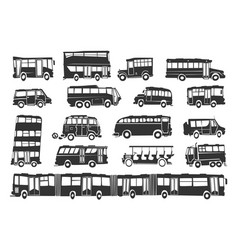 Buses vector
