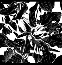 Floral seamless pattern flower black and white vector