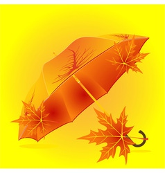 autumn umbrella vector image vector image