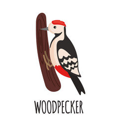 cute woodpecker in flat style vector image