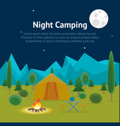 cartoon camping night view card poster vector image vector image