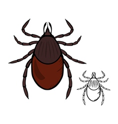 Castor bean tick vector
