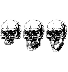 Cool detailed horror human skull graphic set vector image