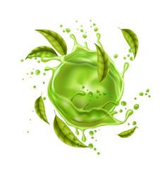 Green juice splash explosion green leaves vector