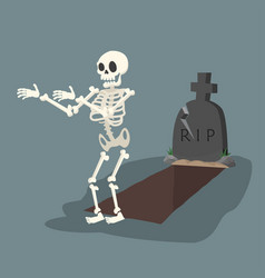 open grave and headstone with skeleton vector image