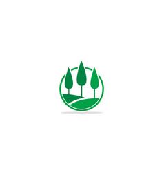 pine tree landscape nature botany logo vector image