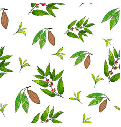 Seamless pattern with coffee cacao and tea vector
