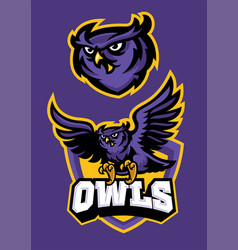 sport mascot style of owl in set vector image