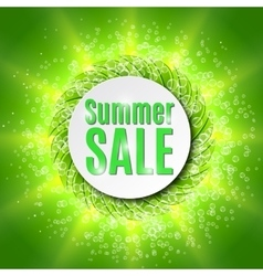 Summer sale with fresh green leaf vector image