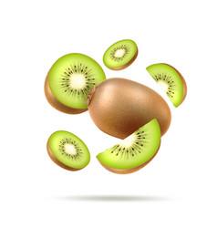 Realistic fresh kiwi exotic whole fruit vector