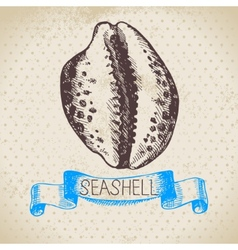 Seashell hand drawn sketch vector image