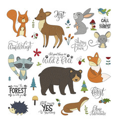 Set of hannddrawn cute forest animals and vector