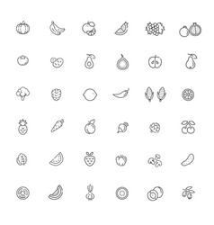 set outline stroke fruit outline icon vector image