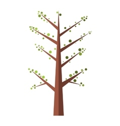 Spring Tree flat icon vector image