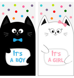 Cat family couple with bow flyer poster set cute vector