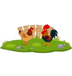 cute chicken cartoon in grass vector image